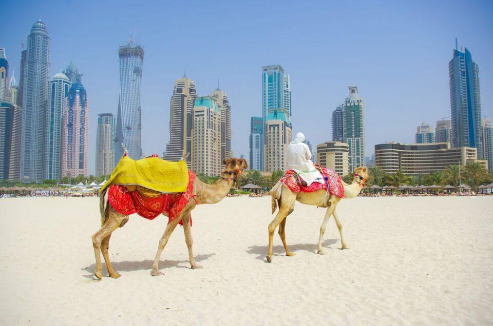 ταξίδι στο Ντουμπάι - Βόλτα με καμήλες