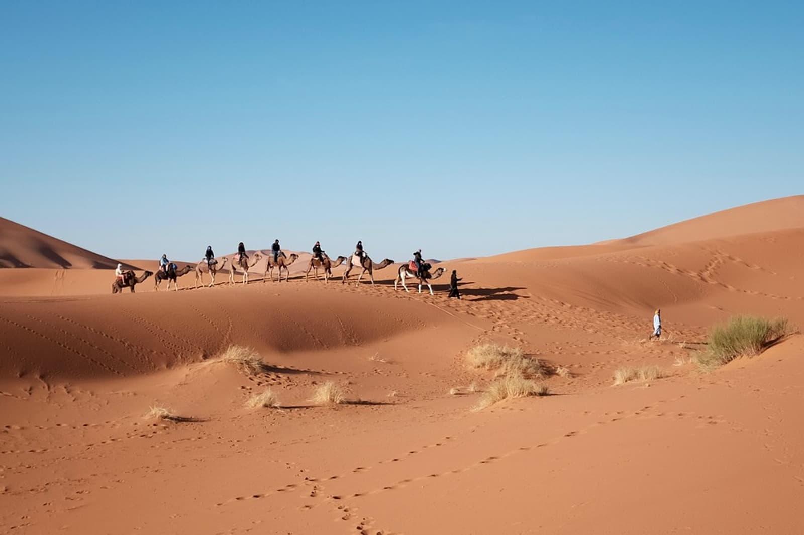 Προορισμοί για ζευγάρια Αίγυπτος βόλτα με καμήλες